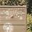 Thumbnail: Les Pissenlits blancs