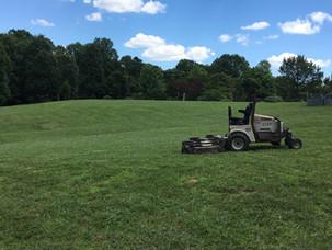 Yard work!