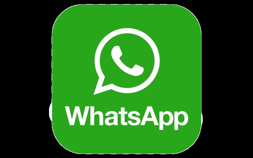 WeChat%20Image_20210312081912_edited