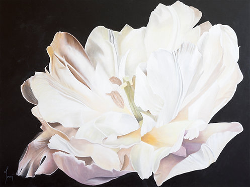 """The Tulip"" Giclee Print on Canvas"