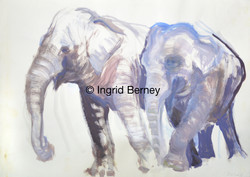 4_zwei_Elefanten
