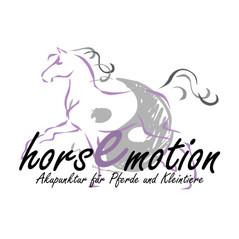 Referenz__0000s_0034_Logo_horsEmotion.jp