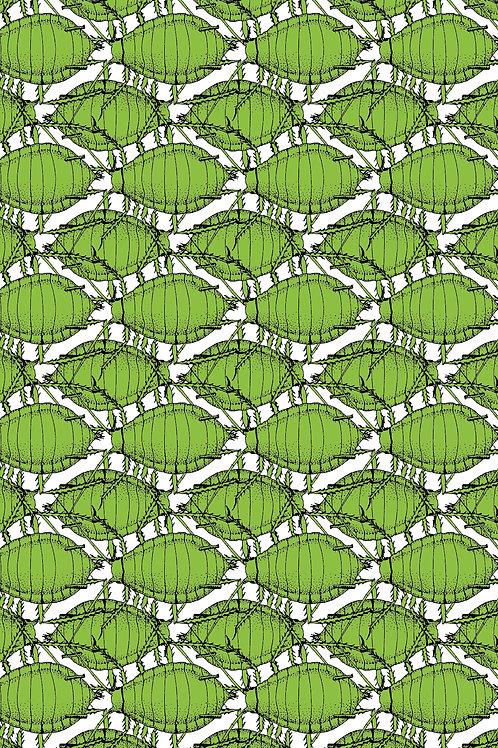 Postkarte Blattlaus grün