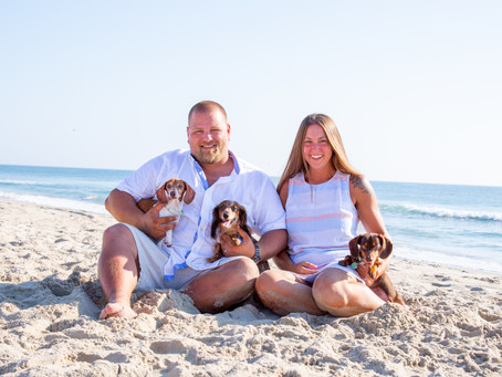 Corolla Portraits with Furry Friends!