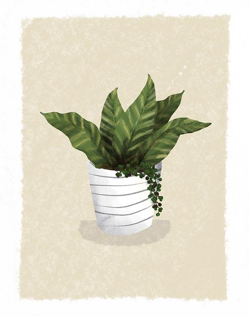 Plant_Artwork.png