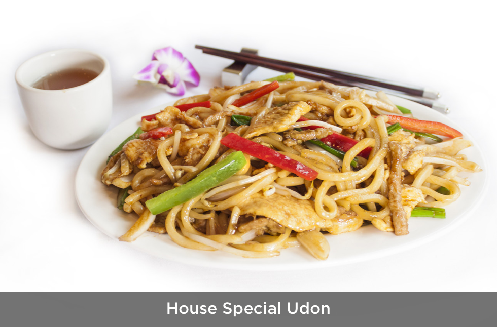 House Special Udon.png