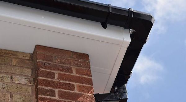 Clean fascia and soffits