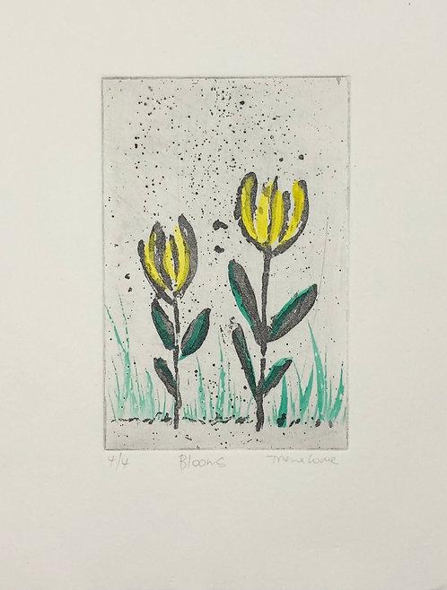 Blooms 4/4