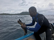 Monitorização marinha. © Gabriela Fernandes