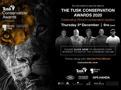 Programa Tatô nomeado para o Tusk Conservation Award 2020