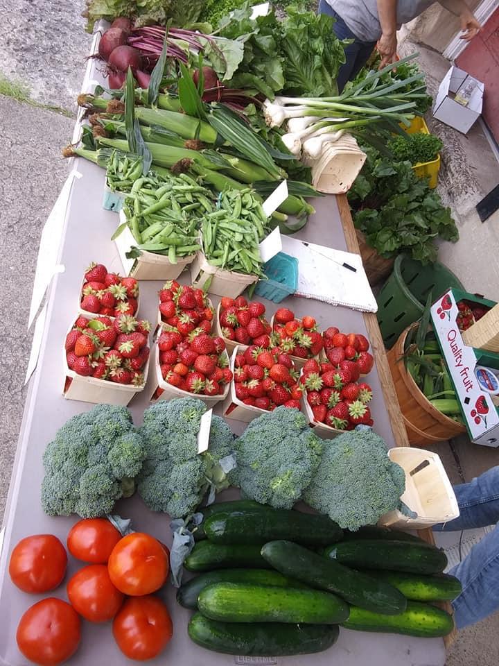 jesses farm market 13.jpg