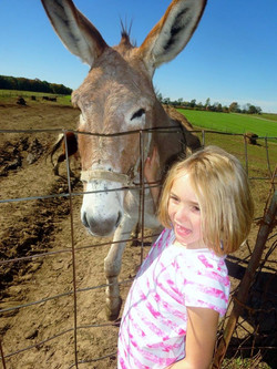 Natalie with a donkey