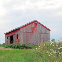 Original barn at Porter Farms