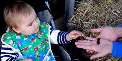 Foster a love of nature in your child