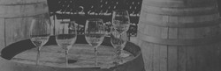 wine_edited