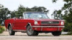 Mustang_edited.jpg
