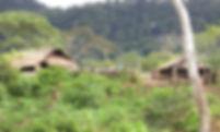 PNG1.jpg