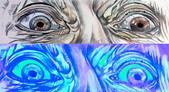 Hazel/ Grey Heterochromia Combi