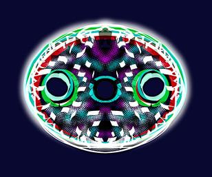 Diatom Oval Blue