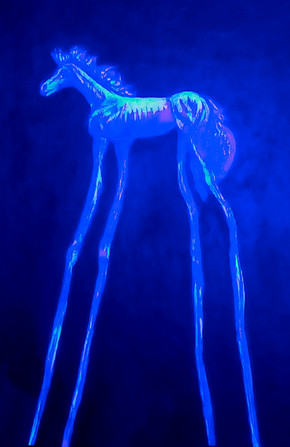 Horse With No Name UV