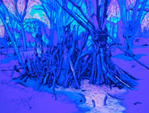 Epping Forest5 UV