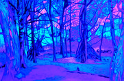 Epping Forest6 UV