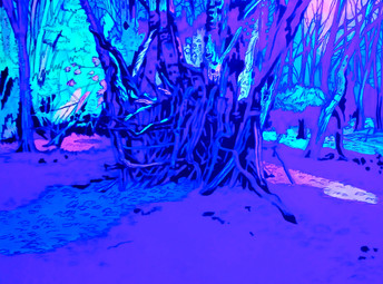 Epping Forest4 UV