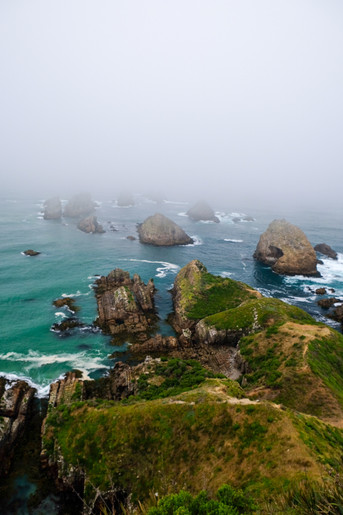 View from Nugget Point