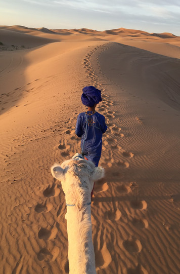 Sahara walk