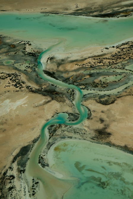 View from the Sky at Shark Bay