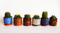 Functional Pottery