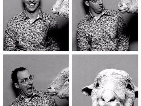 Buster Sheep in a Photo Booth