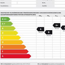 EnergieAusweis_2011_WG1web.jpg