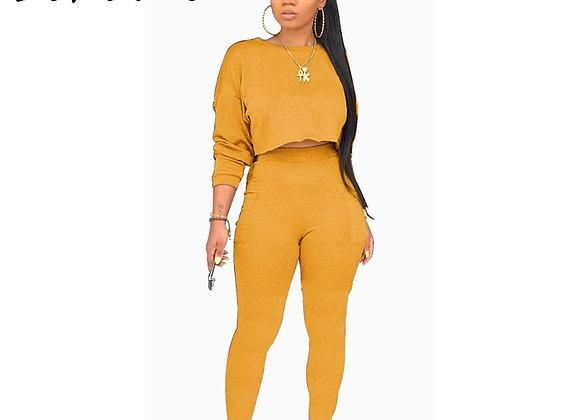 Echoine Two Pieces Sweat Pant Suit Tracksuit Women Solid 5 Color Plus Size 2XL