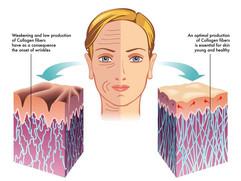 microneedle-derma-roller-[3]-287-p.jpg