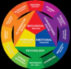 Medicine-Wheel-Spectrum.png