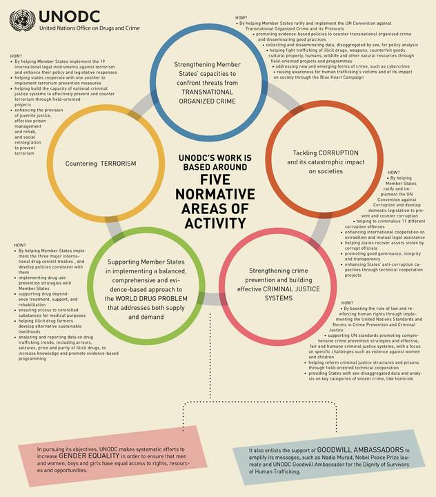 activity-areas_1100x1251px.jpg