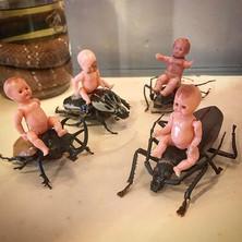 Saddle up babies