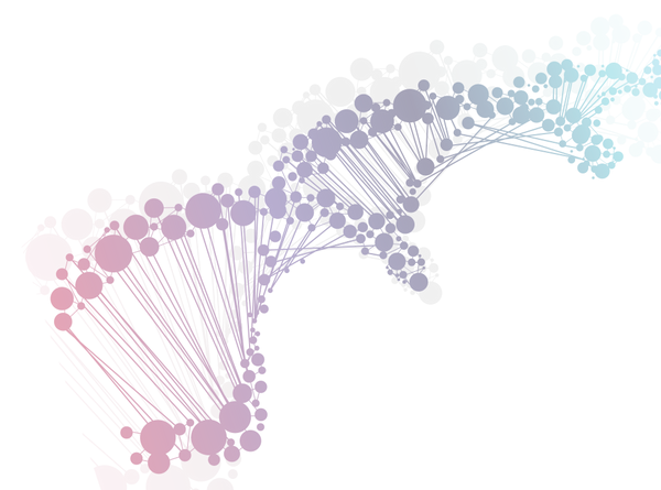Multimedia DNA