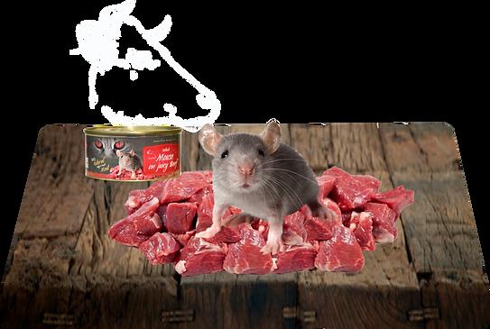 hovězí maso, celá myš - holátko