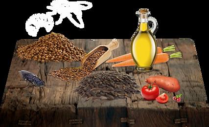 Sušený hmyz 29%, sušené sladké brambory 19.7%, hrášek 17.5%, kuřecí tuk 10.5%, hrachová bílkovina 8.5%, pivovarské kvasnice 3%, minerály 2%, sušená rajčata 2%, sušená mrkev 1%, lososový olej 0.5%, lněný olej 0.5%, brusinky 0.2%, inulin (zdroj FOS) 0.2%.