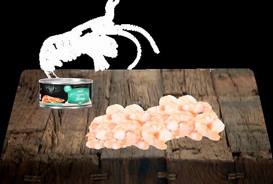 Celé loupané argentické krevety, vývar, kolagen.