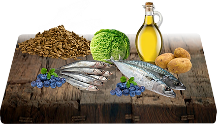 Moučka z divokých sleďů (nebo z divokých sardinek), moučka z ančoviček (53 %), brambory (29 %), kuřecí tuk, celé borůvky (5 %), taurin, glukosamin.