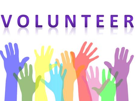 CatFriends | Volunteer at a Spay+Neuter Clinic! | O'ahu, Hawai'i