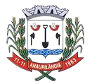 Anaurilândia_Coat_edited.png
