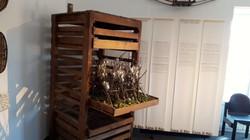 Museo di stabio