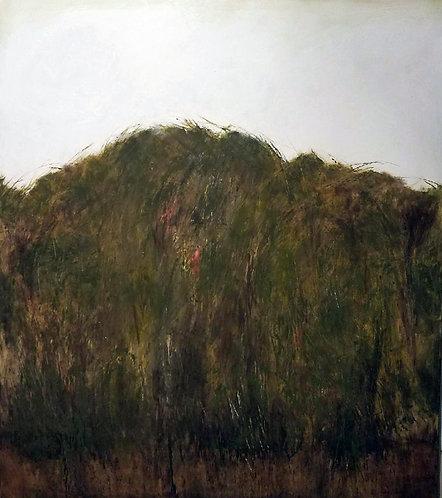 """""""RAIN FOREST"""" by Brian Hagiwara"""