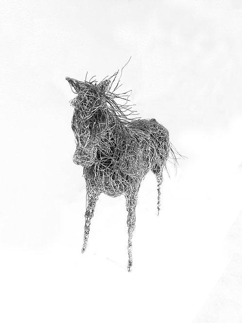Wire Horse Sculpture by Artist Bob Tuffin