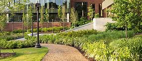 Education-Landscape-Services_1.jpg