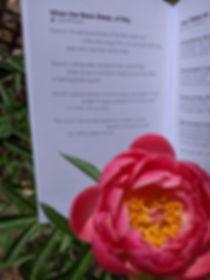 mlj_stars_poem_published.jpg